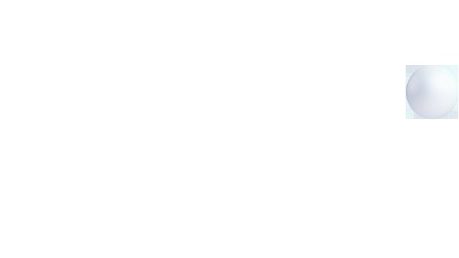 Esfera web puebla